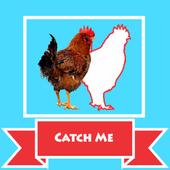 捉鸡游戏2021手机版