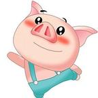 猪猪影视app下载客户端