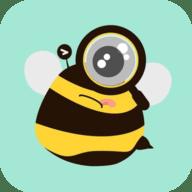 蜜蜂追书不升级版