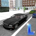 驾校模拟练车
