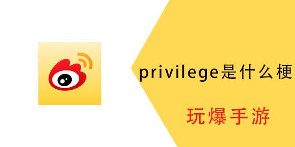 privilege是什么梗