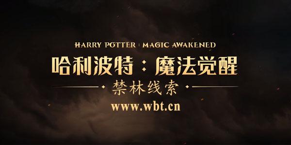 哈利波特魔法觉醒禁林线索